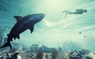 На E3 анонсировали симулятор акулы ManEater
