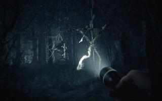 На E3 показали геймплейный ролик хоррора Blair Witch