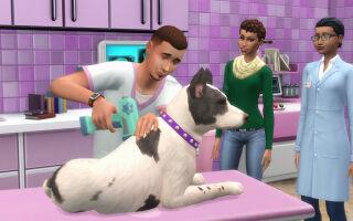 В The Sims 4 добавят кошек и собак