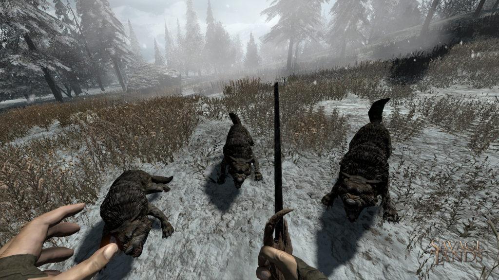 Игрок сражается за свою жизнь против волков